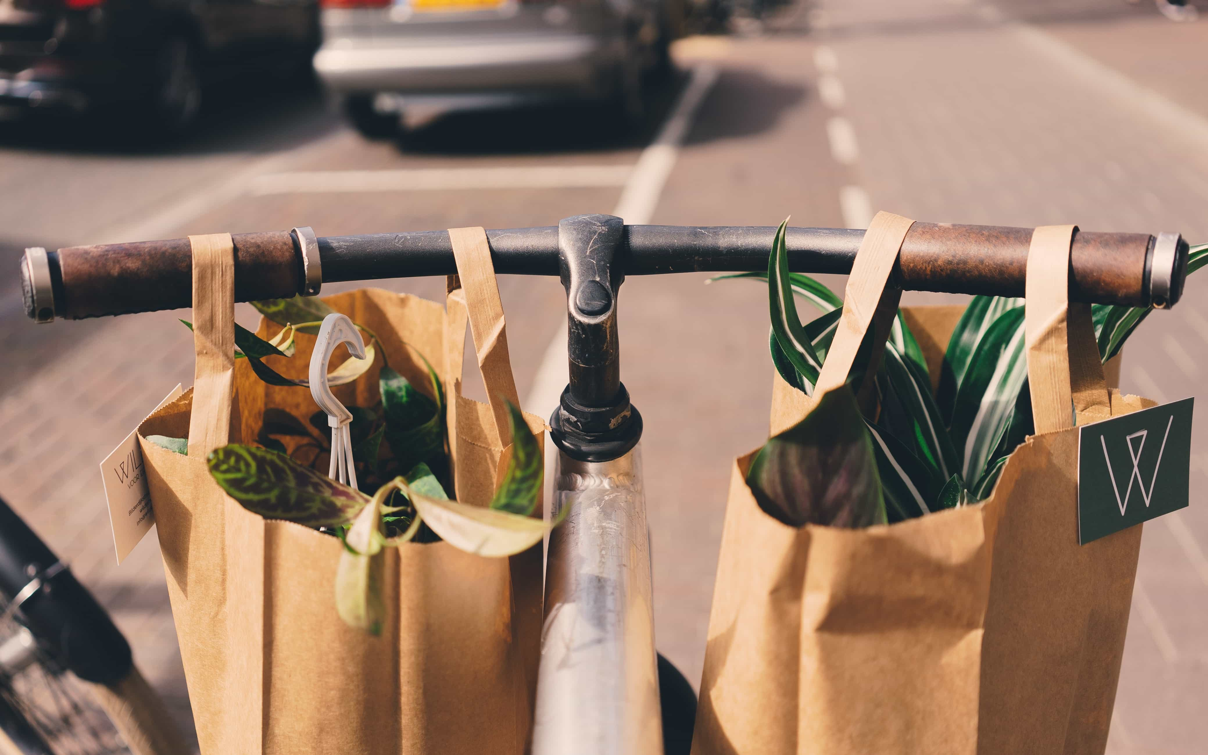 plastic free shopping